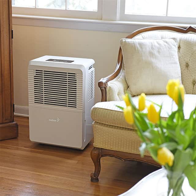 With All This Being Said People Are Still Wondering Exactly How Effective Dehumidifiers They Want To Know Will A Dehumidifier Kill Mold And