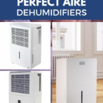Best Perfect Aire Dehumidifier Reviews 2019