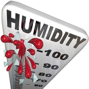 Humidity Level Rate Rising 100 Percent Thermometer