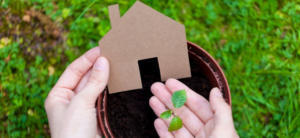 FEATURE IMAGE - ALL THE WAYS TO GO GREEN AT HOME