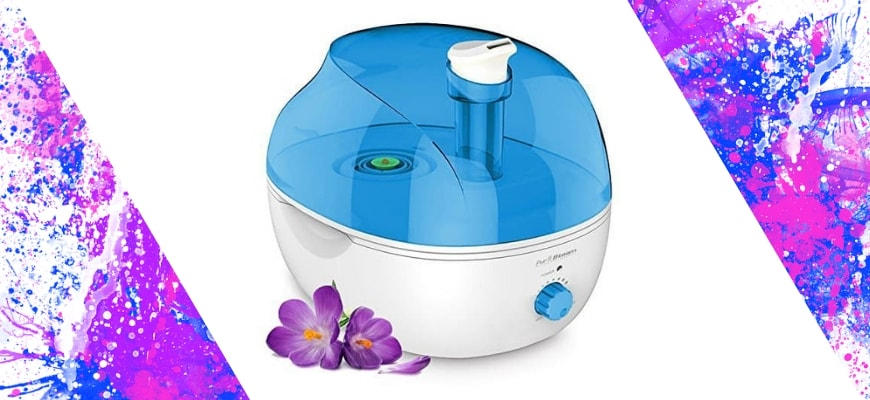 FEATURE IMAGE - WHAT IS THE BEST HUMIDIFIER FOR DRY NOSE