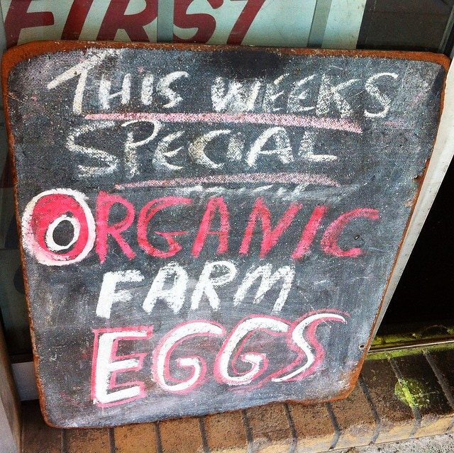 this week's special organic farm eggs