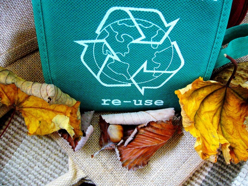 Reuse in blue green bag with leaves