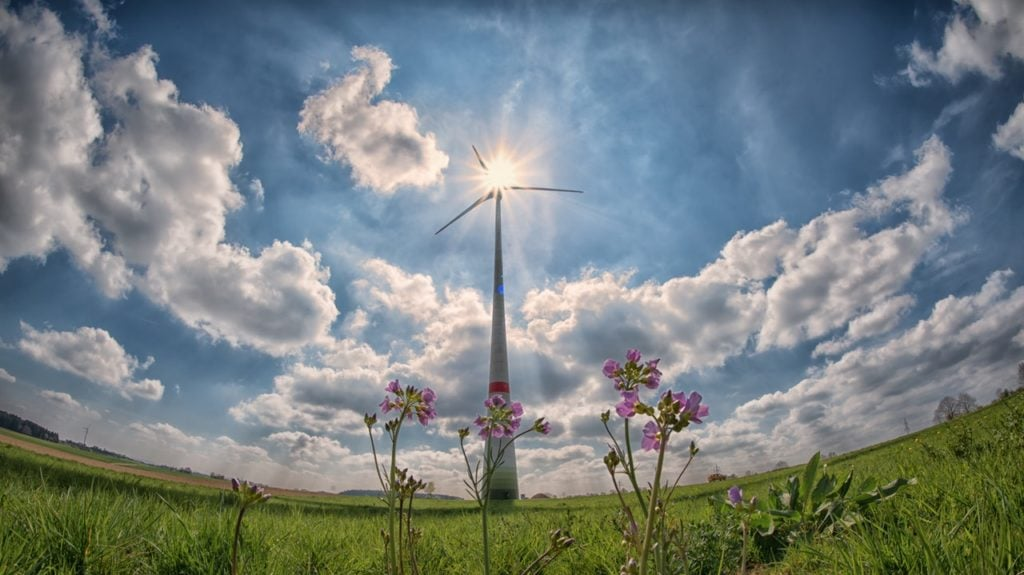 Wind energy turbine on the grass ground with flowers in bright sky background