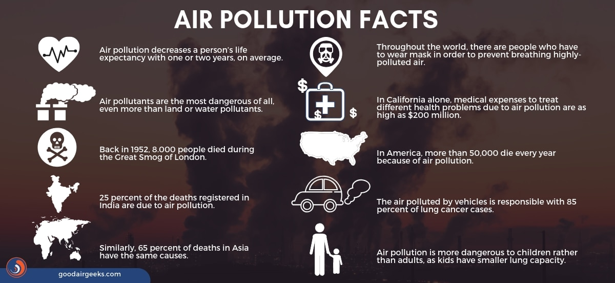 An infographic showing the facts of Air Pollution